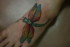 ryandragonfly